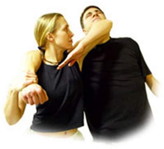 the gentle art of verbal self defense pdf